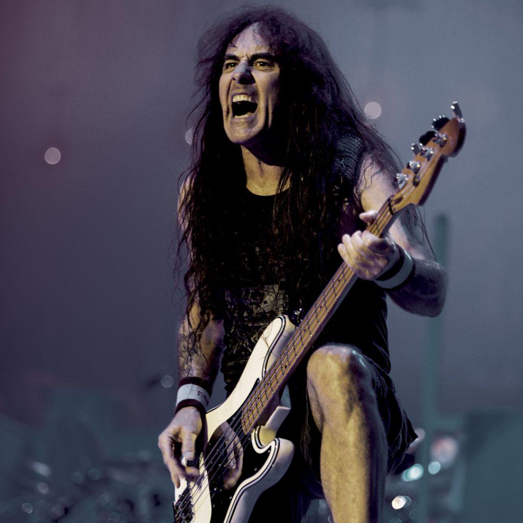 Steve Harris Iron Maiden flatwound Rotosound strings