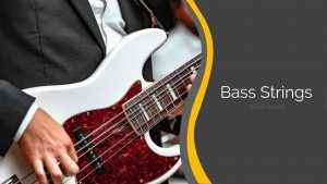 Gear Savvy Best Bass Strings ranked award buyers guide 2020 roundwound swing bass 66